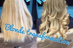1 Blonde Transform
